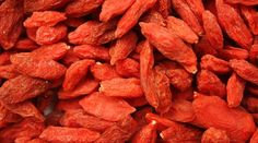 Issue des vallées sauvages du Tibet, les baies de goji, petit fruit rouge ressemblant à une cerise allongée, sont utilisées par les Tibétains depuis plusieurs milliers d'années comme médecine traditionnelle. Des études scientifiques prouvent et confirment les évidents bienfaits de la consommation quotidienne de ce petit fruitrouge car il intervient dans la prévention et le …