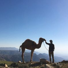 """47 Likes, 2 Comments - Jordan Tourism Board N.America (@myjordanjourney) on Instagram: """"Day 26 on the Jordan Trail with #AndrewWalksJordan 🐪😊 // Link in bio to keep following along and…"""""""