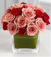 Exotic Flowers gives up on Boss's Day and Sweetest Day. Exotic Flowers, Red Flowers, Pink Roses, Flowers Last Longer, Bosses Day, Sweetest Day, Perfect World, Flower Making, Red And Pink