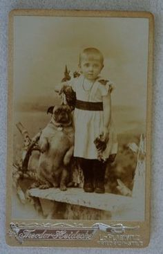 antique CDV Pug dog child    Ebay