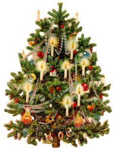 Vintage Victorian Christmas tree scrap clipart image for decoupage. Christmas Tree Poster, Noel Christmas, Christmas Crafts, Christmas Decorations, Christmas Lights, Christmas Spider, Christmas Arrangements, Clip Art Vintage, Vintage Cards