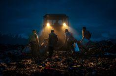 PHOTOS. Le concours du meilleur photographe d'environnement de l'année, pour inciter à protéger notre planète
