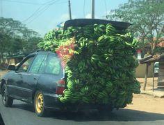 Carrying Load Nigeria style. Its Banana O!  #banana #lovefood #sholasays