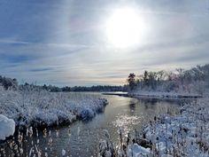 Winter Sun - null