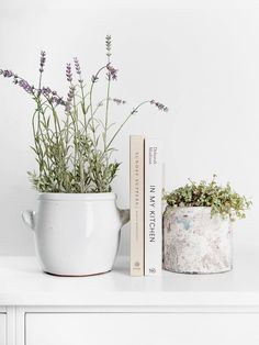 Introducing Hudson Home for Homewares with a Neutral Palette Interior Styling, Interior Decorating, Interior Design, Hudson Homes, Neutral Palette, White Aesthetic, Decor Pillows, Hygge, Furniture Collection