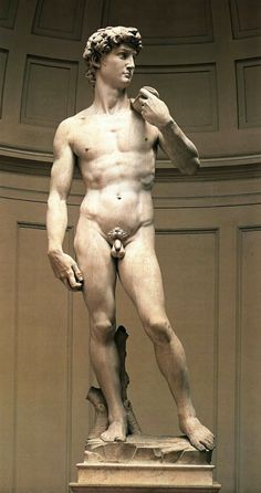 Michelangelo Buonarroti: David jako symbol vítězné florentské republiky, zároveň vypodobení dokonalé mužské krásy