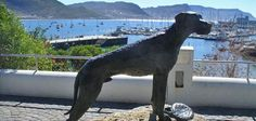 Just Nuisance Statue Simon's Town, South Africa.