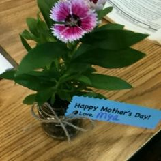 Repurposed baby food jars as student Mothers Day gifts. crafts-to-make-w-kids