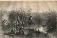 louisiana art prints - Bing Images