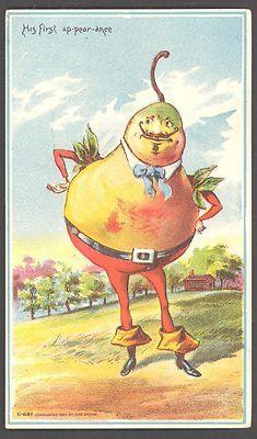 Pear Man ~ c.1880s