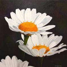 oil on canvas - daisies Floral Artwork, Daisies, Oil On Canvas, Gallery, Plants, Painting, Art Floral, Margaritas, Painted Canvas