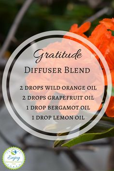 """Maintain an """"Attitude of Gratitude"""" with this uplifting, cheerful diffuser blend! It includes delicious smelling citrus oils: wild orange, grapefruit, bergamot and lemon."""
