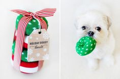 Many DIY dog toys & treats + more