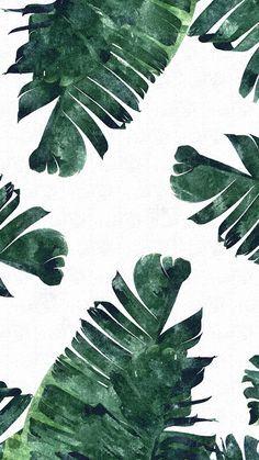 Tropical leaves iPhone wallpaper