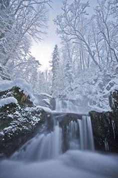 """Winter Dream | Emanuel Sutterlüty "" #winter #snow #waterfall #wonderland"