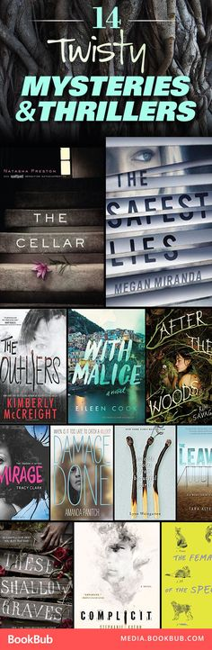 Searching for a great book to read next? These 14 mysteries and thrillers will get your heart racing.