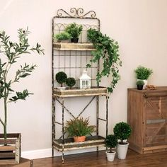 New Pieper Plant Stand by Gracie Oaks. Metal Wall Planters, Wood Planter Box, Window Planter Boxes, Decorative Planters, Garden Planters, Steel Planter, Patio Gardens, Herb Garden, Vegetable Garden