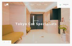 http://tokyocatspecialists.jp/