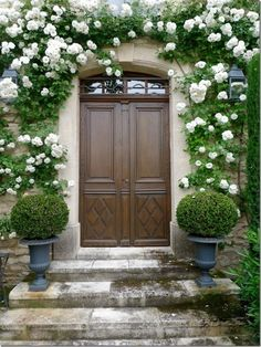 Climbing roses surround the front door, Via Cote de Texas. Dream Garden, Home And Garden, Garden Modern, Moon Garden, Garden Cottage, The Doors, Front Doors, Front Entry, Front Porch