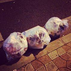 .@yohan_choi | 쓰레기도 일제 #쓰레기 | Webstagram