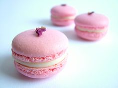 Rose raspberry macarons
