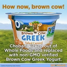 Chobani Kicked Out Of Whole Foods And Replaced With Non-GMO Verified Brown Cow Greek Yogurt. More Here: http://gmoinside.org/whole-foods-stop-selling-chobani-yogurt