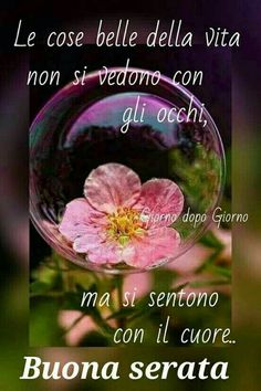 Italian Phrases, Italian Quotes, Evening Quotes, Good Morning Good Night, Google, Italy, Messages, Stickers, Flowers