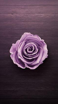 Purple Wallpaper Phone Backgrounds New Ideas Purple Wallpaper Phone, Galaxy Wallpaper Iphone, Background Hd Wallpaper, Flower Wallpaper, Wallpaper Backgrounds, Desktop Wallpapers, Desktop Backgrounds, Gray Wallpaper, Heart Wallpaper