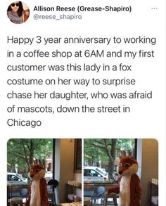 35 Random And Hilarious Pictures From Today's Internets 3 Year Anniversary, Fox Costume, Good Pranks, Smiles And Laughs, Funny Animals, Funniest Animals, Best Funny Pictures, Make Me Smile, Haha