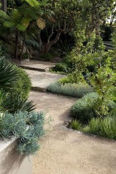 Australian Coastal Style - 7 steps to achieve this look - Ma.- Australian Coastal Style – 7 steps to achieve this look – Making your HOME beautiful - Bush Garden, Dry Garden, Side Garden, Garden Paths, Tropical Landscaping, Tropical Garden, Front Yard Landscaping, Landscaping Ideas, Landscaping Software