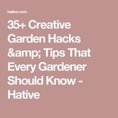 35+ Creative Garden Hacks & Tips That Every Gardener Should Know - Hative
