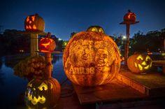 Spectacular Jack-O-Lanterns Brilliantly Carved and Lit Up