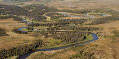 alaska bristol bay - Google zoeken