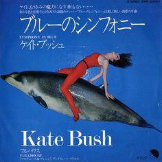 Kate Bush Symphony In Blue Japanese Promo vinyl single inch record) Lp Cover, Cover Art, Kate Bush Albums, Record Producer, Art Images, Album Covers, Japanese, Blue, Rainbows