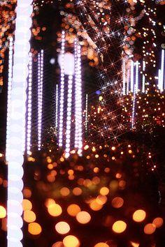 Illumination, Akasaka, Tokyo