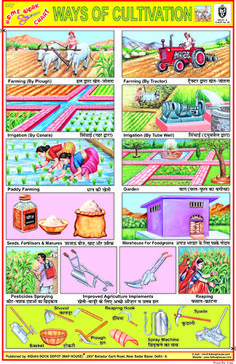 Indian Book Depot - Educational Charts Yoga Asanas Names, Name Of Vegetables, Ideal Girl, Charts, Students, Posters, Indian, Map, Stickers