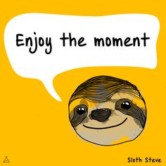 Enjoy the moment #sloth #art #yellow #beauty #love #nature #selfie #life #smile #friend #quote #funny #cool #motivation #energy #moment #animal #joy #boy #girl #happy #illustration #amazing #picture #rainbow #fun