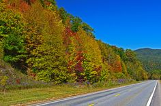 The section of US 64 between Franklin and Hayesville, NC. Nice motorcycle ride.