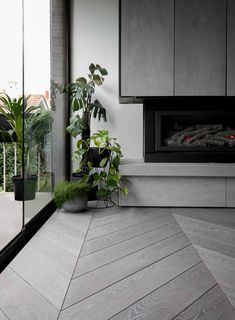 Ocean in a private residence in Elsternwick. Timber Flooring, Ocean, Touch, Interior, Plants, Collection, Arquitetura, Wood Flooring, Indoor