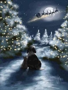 We Are So Good by Veronica Minozzi – Winterbilder Noel Christmas, Christmas Animals, Vintage Christmas Cards, Christmas Night, Magical Christmas, Couple Christmas, Winter Christmas Scenes, Merry Christmas Eve, Christmas Puppy