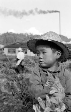 Boy with straw hat and kitten - Japan - October 1956 Source kiokuno1010.blog31.fc2.com Vintage Pictures, Old Pictures, Vintage Images, Photos Du, Old Photos, Fotojournalismus, Japanese History, Digital Museum, Japan Photo