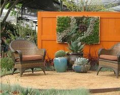vertical garden, succulents, beautiful furniture, AND a bright color...love it. I love this idea, I saw a famous vertical garden artist featured on tv and it's amazing what they can do!