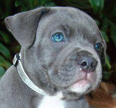 Those blue eyes!