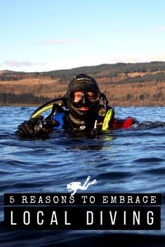 Feeling you're not scuba diving often enough? What about the dive sites in your area? Here are 5 good reasons to give a try at local diving! #scubadiving #scuba #diving #scubadiver #localdiving #divelocal #Europe Manta Ray, Snorkelling, Underwater Photography, Extreme Sports, Ocean Life, Marine Life, Scuba Diving, Travel Inspiration, Travel Tips