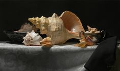 """#STILL #LIFE GALLERY: #Conches, 2009 
