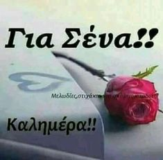 Για σενα'' Beautiful Pink Roses, Happy Day, Good Morning, Diy And Crafts, Life Quotes, Letters, Anastasia, Decoupage, Places
