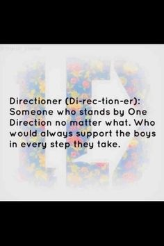 It doesn't matter what you ship, how long you have been here, or how old you are. As long as you do these things you are a directioner and THAT is all that matters <3