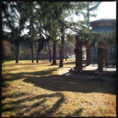 Taken from Lindenwood University