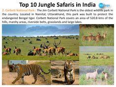 Jim Corbett National Park >>> http://www.instructables.com/id/Top-10-Jungle-Safaris-in-India/  #NationalParks, #WildlifeSanctuary, #WildlifeSafaris, #JungleSafaris #India #365Hops #JimCorbett #Nainital, #Uttarakhand