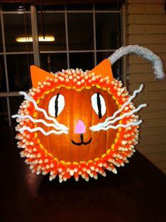 Candy Corn Cat Pumpkin